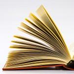 Mit olvasol, megmondom ki vagy