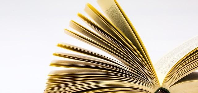 Mit olvasol – megmondom ki vagy