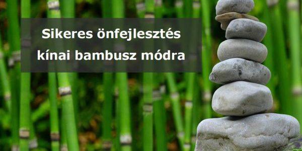 Sikeres önfejlesztés kínai bambusz módra