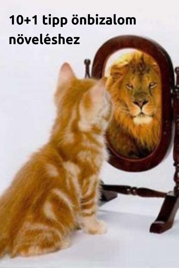 a6cdbc0d28b2 10+1 önbizalom növelő tipp   Az írás tükrében