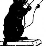 állati grafológia macskakaparás