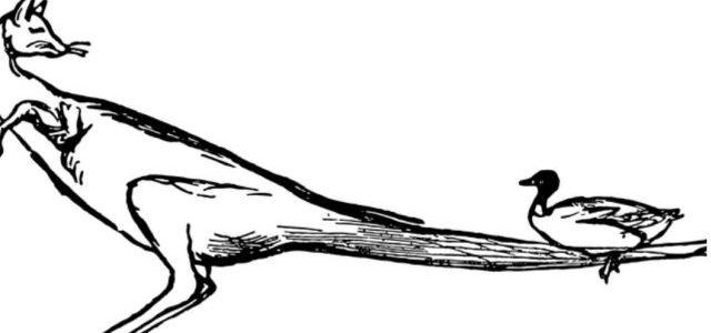 Rajzolj egy nem létező állatot! – önismereti teszt